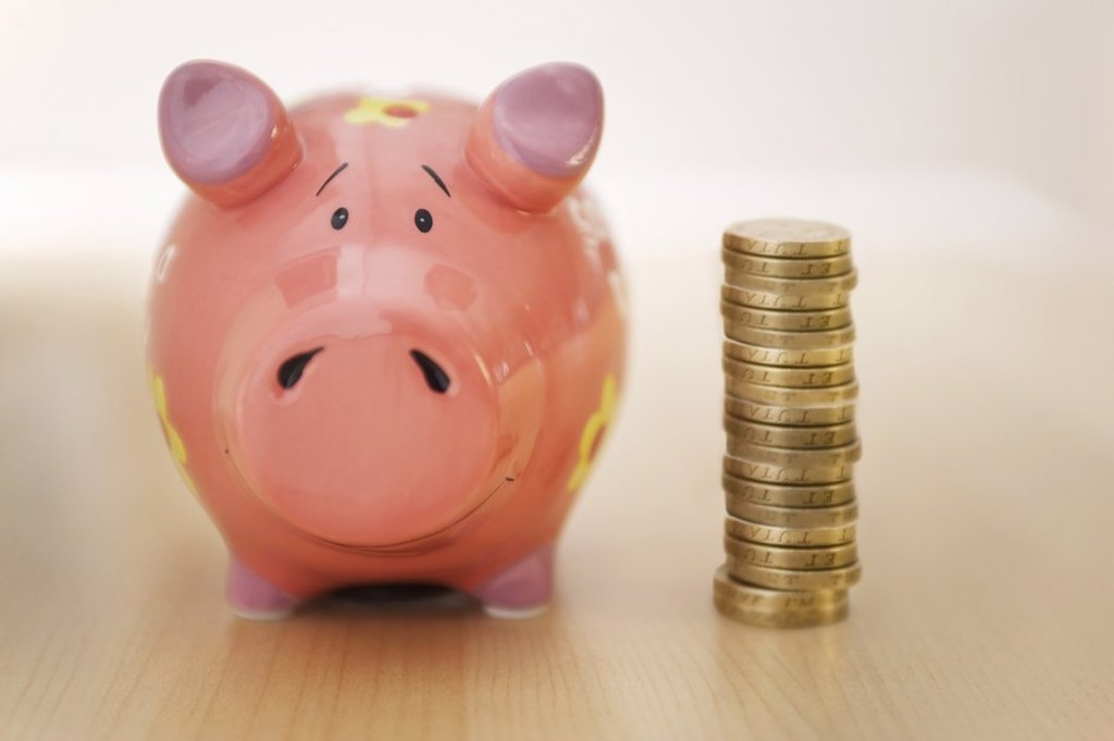 Stock Photo: 1654R-20497 Piggy Bank and Money