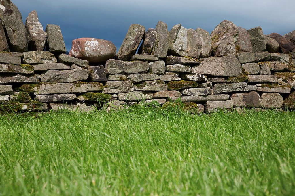 Stone wall by field : Stock Photo