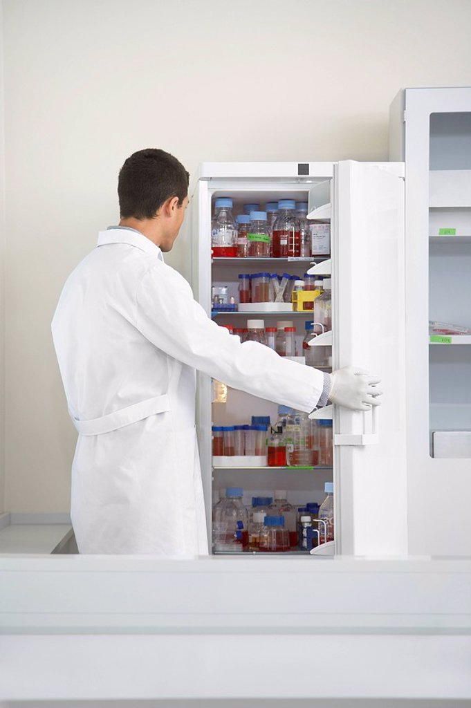 Scientist looking in refrigerator of specimens in laboratory : Stock Photo