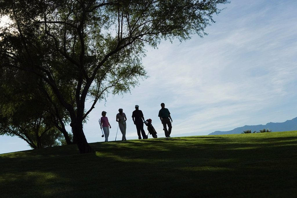 Silhouettes of group of golfers walking on golf course : Stock Photo