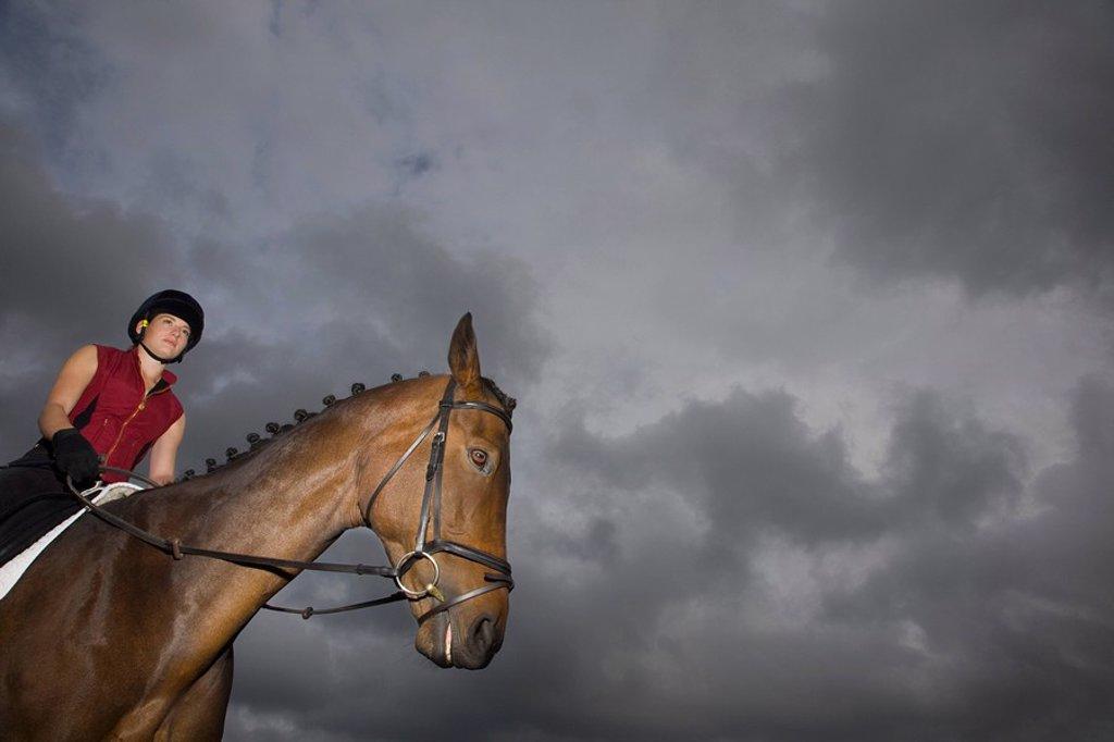Stock Photo: 1654R-31353 Female horseback rider sitting on brown horse
