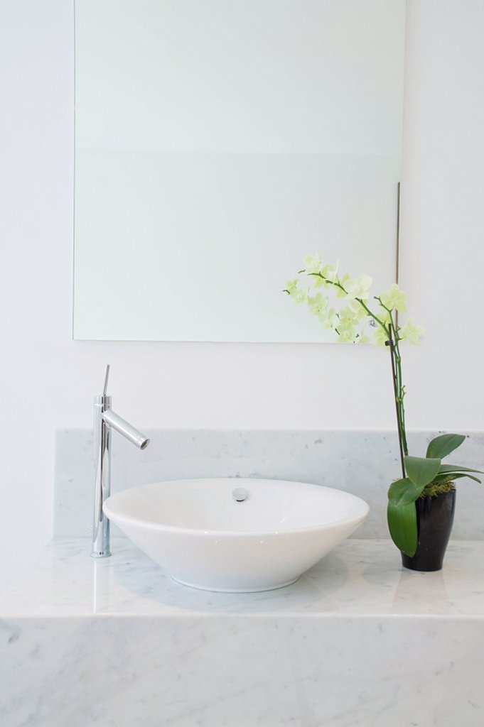 Sink and potted plant in bathroom : Stock Photo