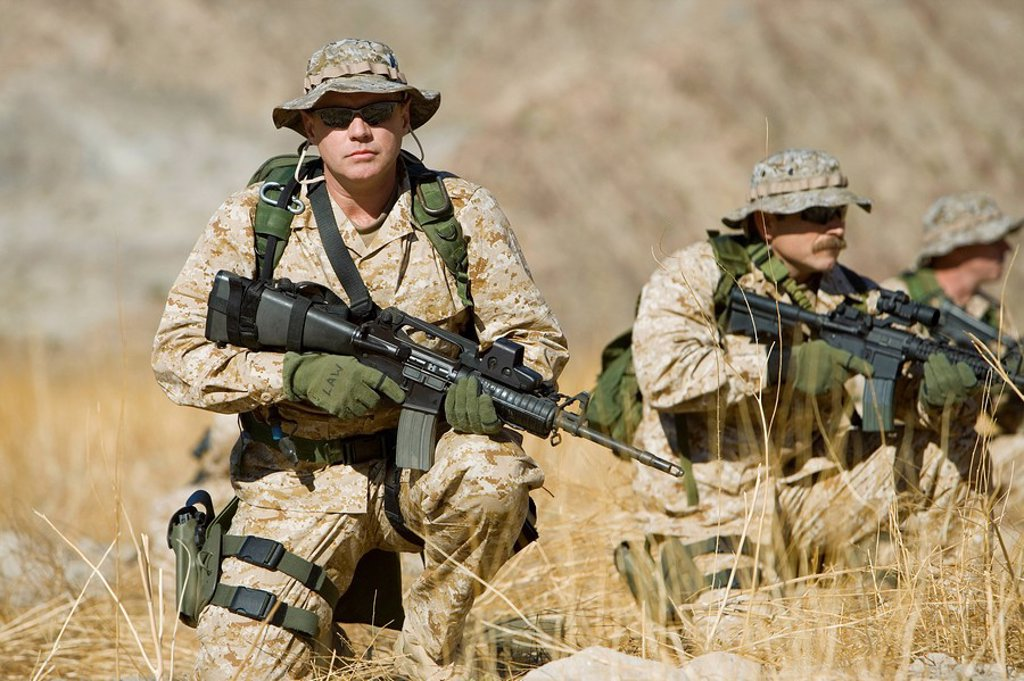 Stock Photo: 1654R-4078 Soldiers with rifles in field