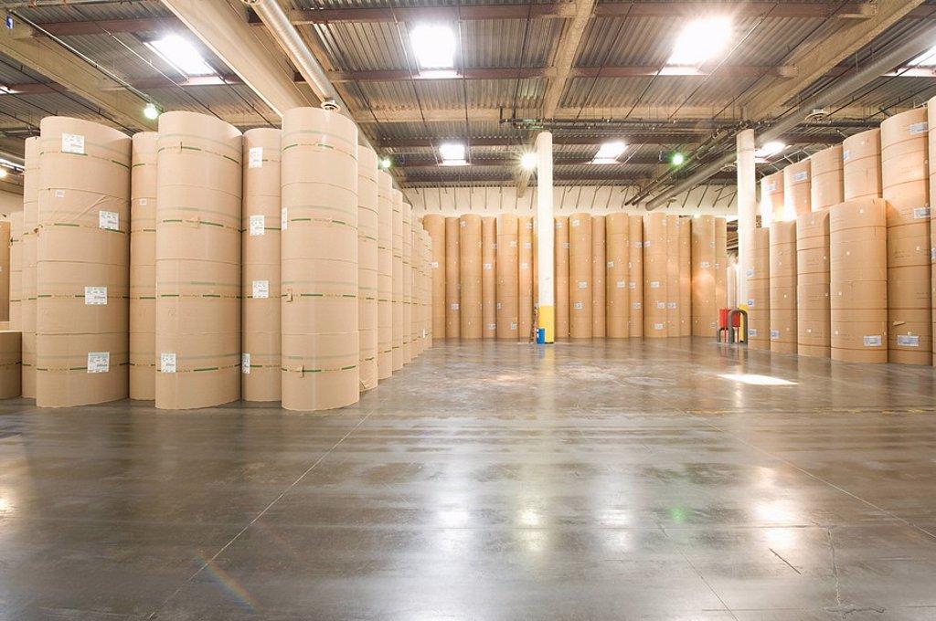 Huge rolls of paper in newspaper factory : Stock Photo