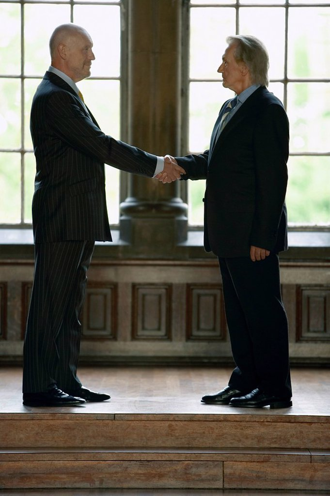 Stock Photo: 1654R-9438 Two businessmen Shaking Hands