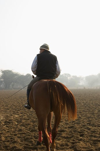 Stock Photo: 1657R-13940 Rear view of a man riding a horse