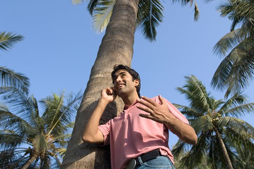 Low angle view of a young man leaning against a tree and talking on a mobile phone : Stock Photo