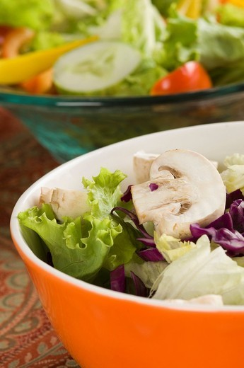 Close-up of two bowls of salad : Stock Photo