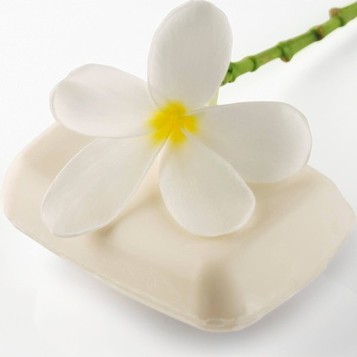 Stock Photo: 1657R-31279 Close_up of a bar of soap with a flower