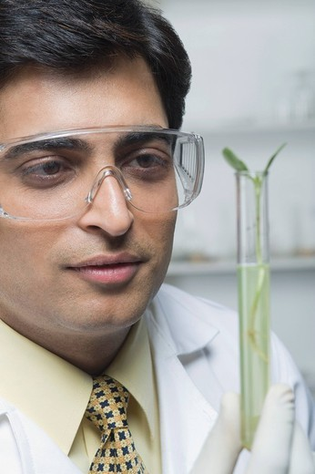 Scientist examining a plant in test tube : Stock Photo
