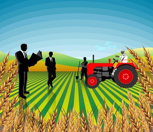 Businessmen and farmers in a field, India : Stock Photo