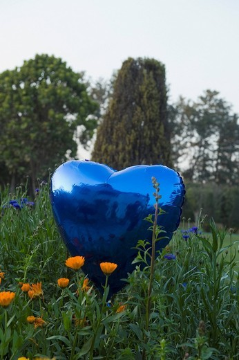 Heart shaped balloon in a park : Stock Photo