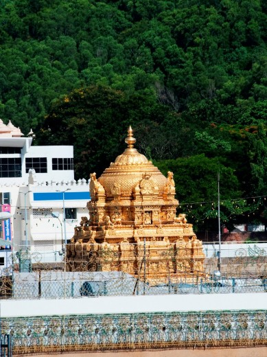 High angle view of a temple, Tirumala Venkateswara Temple, Tirumala, Tirupati, Chittoor District, Andhra Pradesh, India : Stock Photo