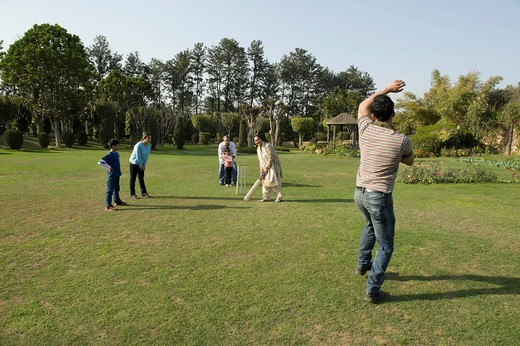Stock Photo: 1657R-39436 Family playing cricket in lawn