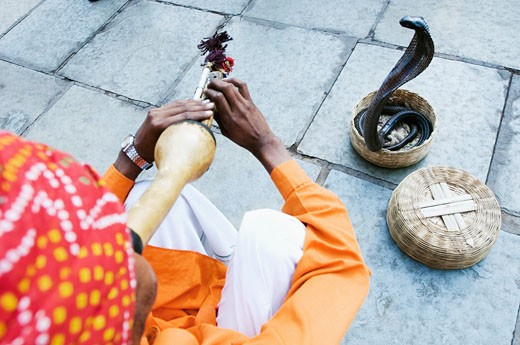 High angle view of a snake charmer playing the flute, Jaipur, Rajasthan, India : Stock Photo