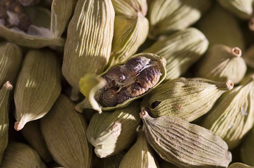 High angle view of Cardamoms : Stock Photo