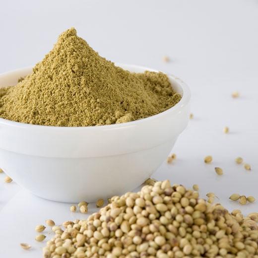 Close-up of Coriander seeds and a bowl of Coriander powder : Stock Photo