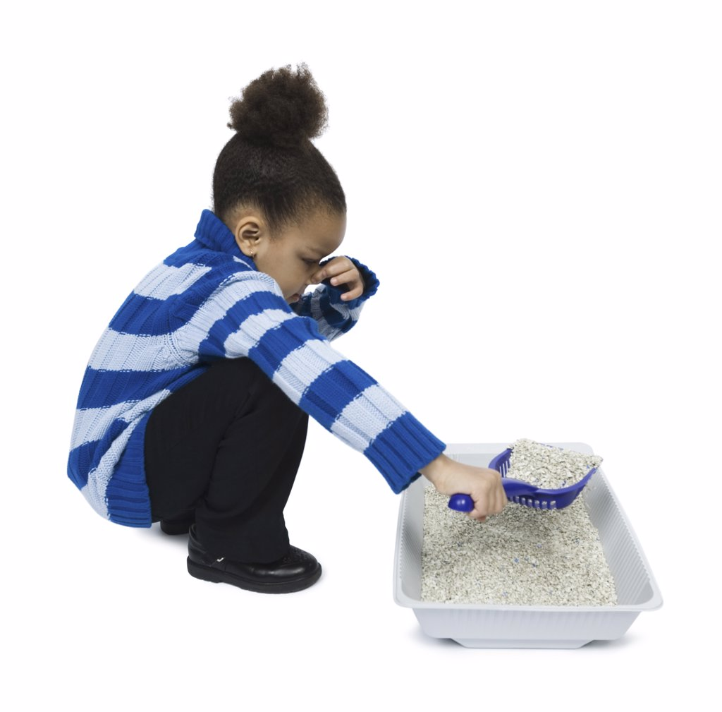 Stock Photo: 1660R-11176 Profile of a girl cleaning a litter box with a scoop