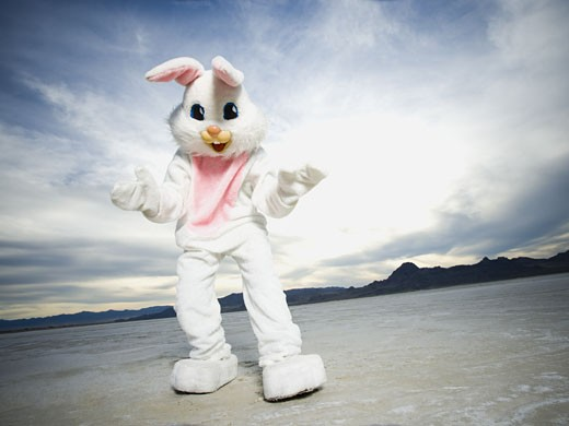 Close-up of a person wearing a rabbit costume : Stock Photo