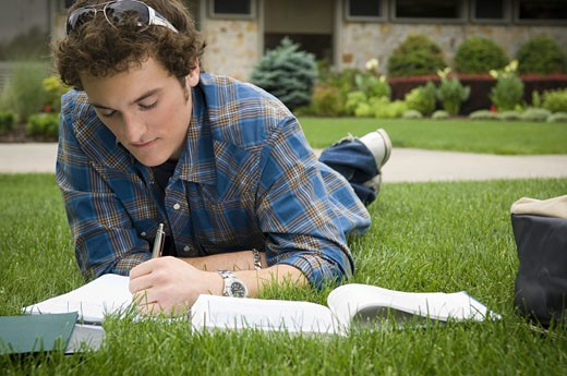 Male student studying outdoors : Stock Photo