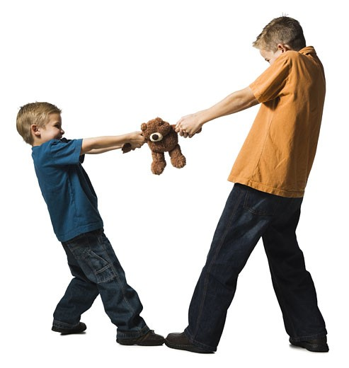 Stock Photo: 1660R-15843 Two brothers arguing over a plush toy
