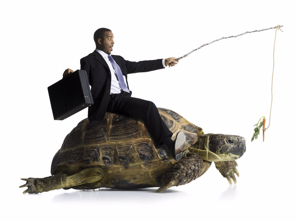 Stock Photo: 1660R-16556 Businessman riding sea turtle with carrot on stick