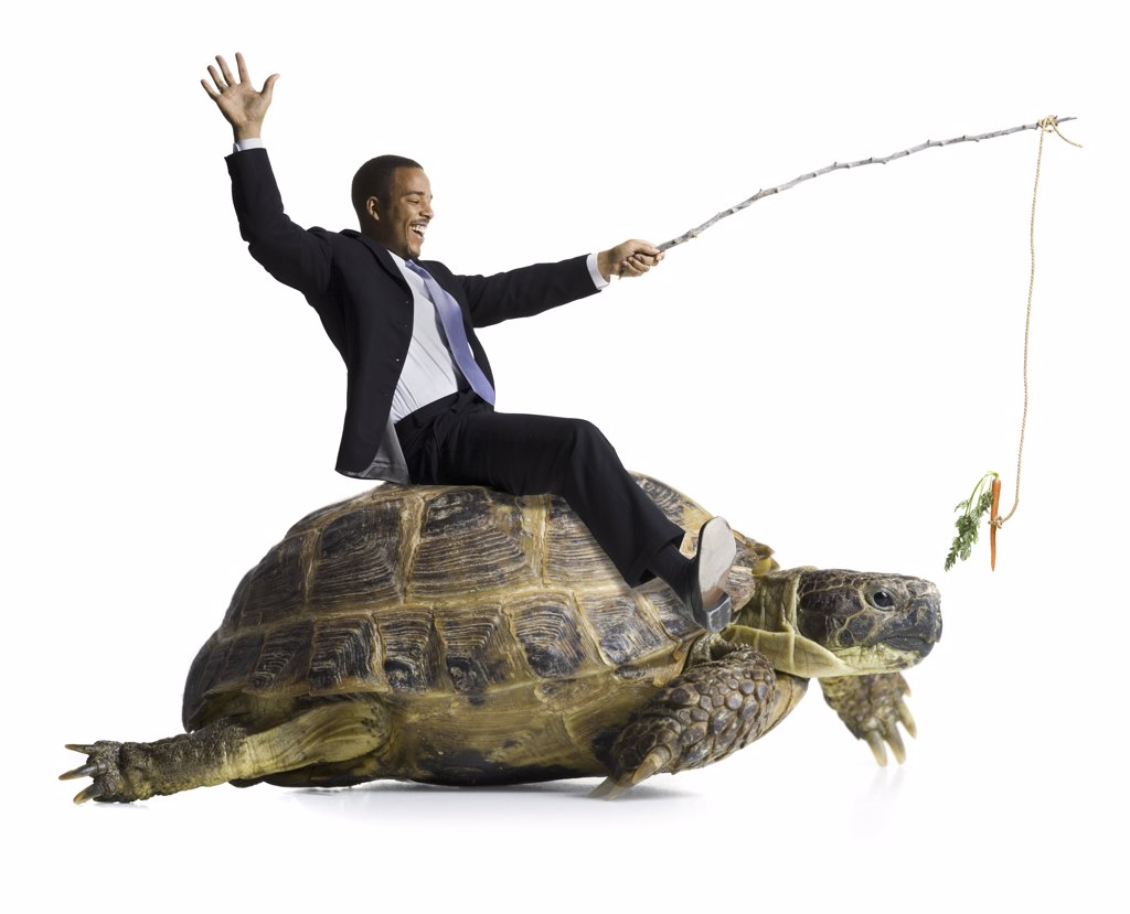 Stock Photo: 1660R-16557 Businessman riding sea turtle with carrot on stick