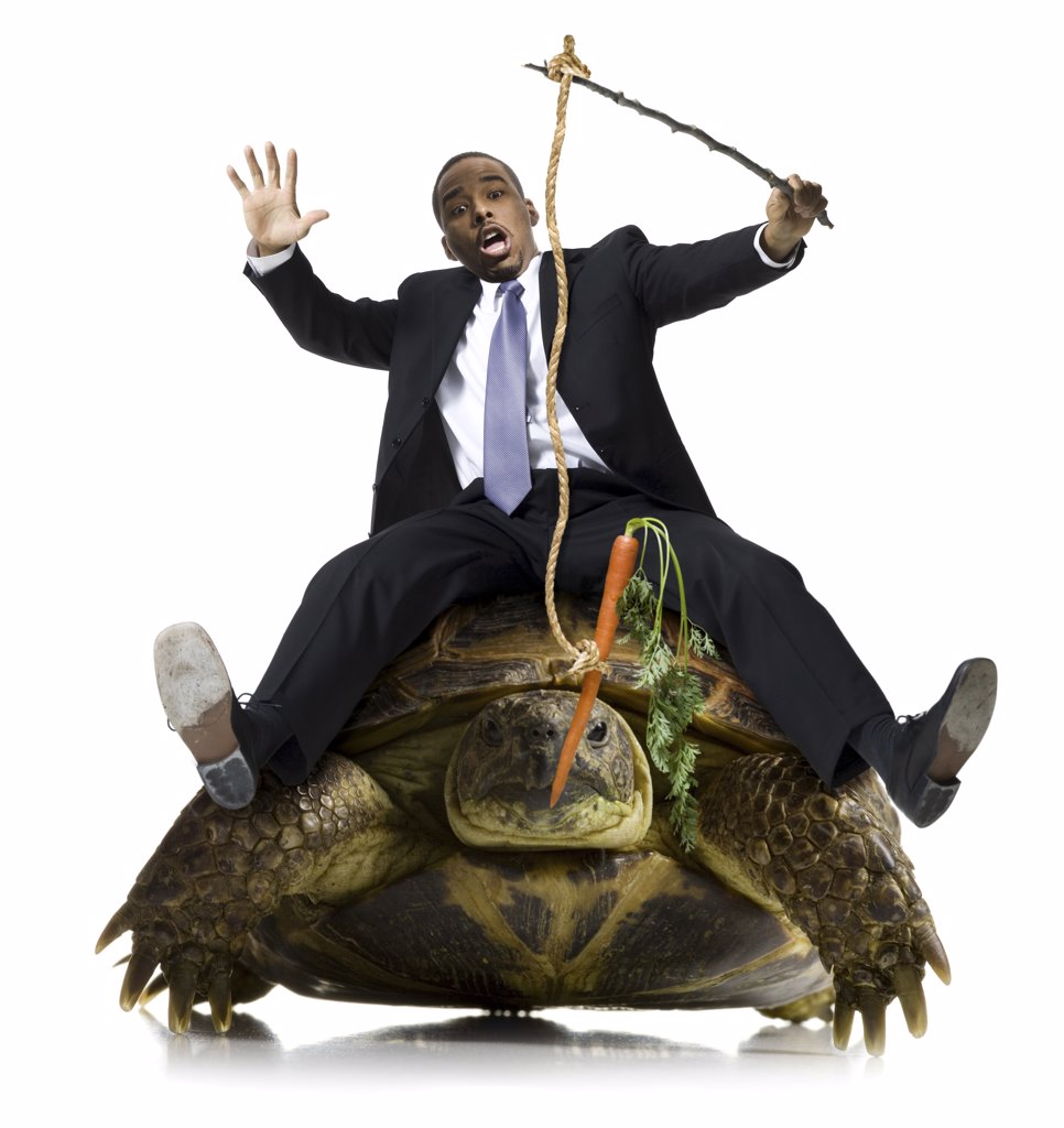 Businessman riding sea turtle with carrot on stick : Stock Photo