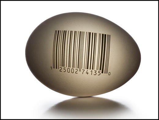 Stock Photo: 1660R-20201 Egg with bar code and numbers