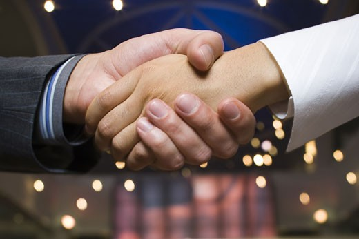 Stock Photo: 1660R-26035 Close-up of a businessman and a businesswoman shaking hands