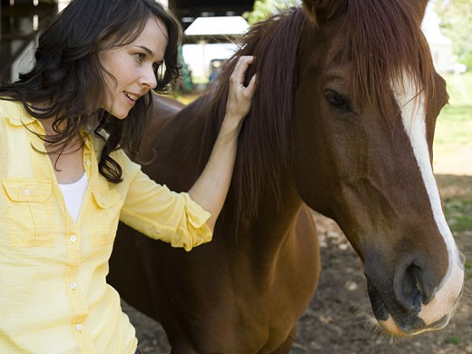 Portrait of a woman and a horse standing in front of a barn : Stock Photo
