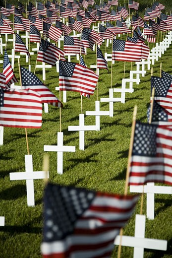 Cross markers with US flags : Stock Photo