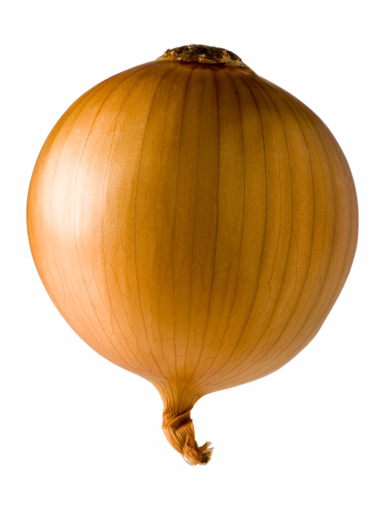 Stock Photo: 1660R-42755 onion