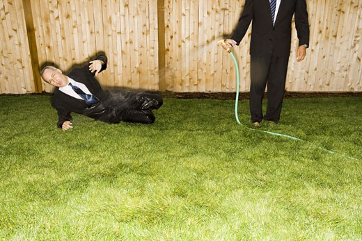 Stock Photo: 1660R-4690 High angle view of a businessman sitting on a lawn getting hosed