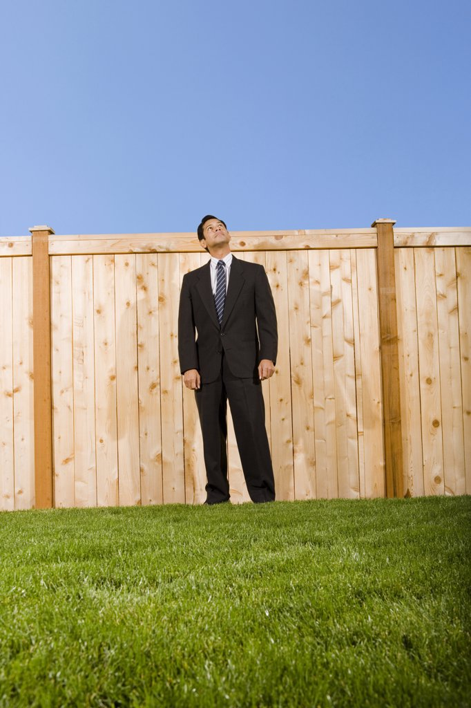 Stock Photo: 1660R-52605 Businessman looking over a wooden fence