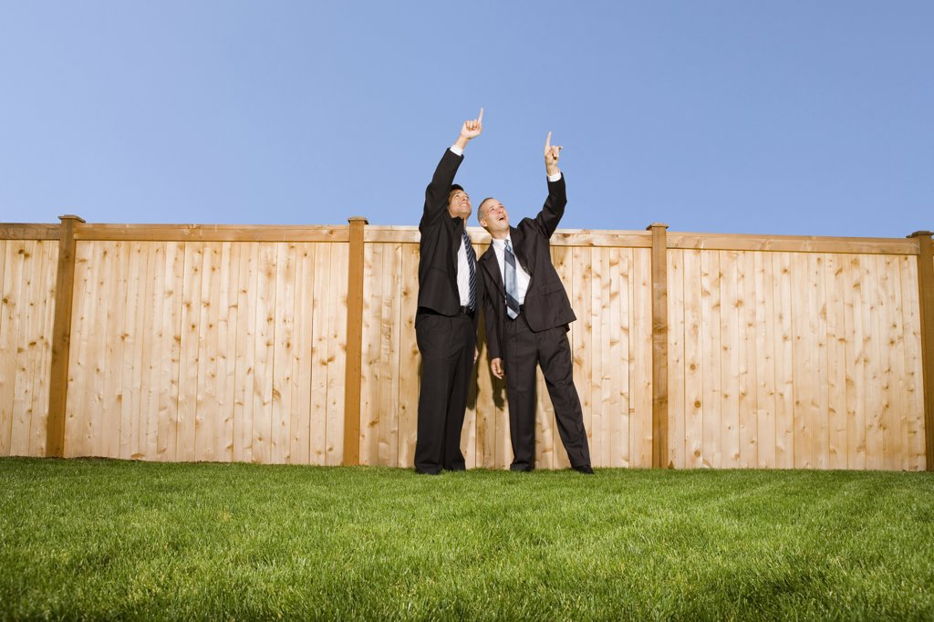 Two businessmen pointing at the sky : Stock Photo