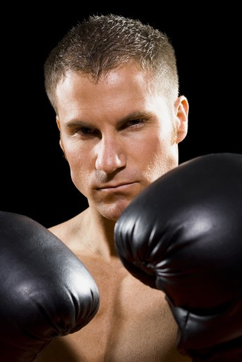 Stock Photo: 1660R-56755 Boxer