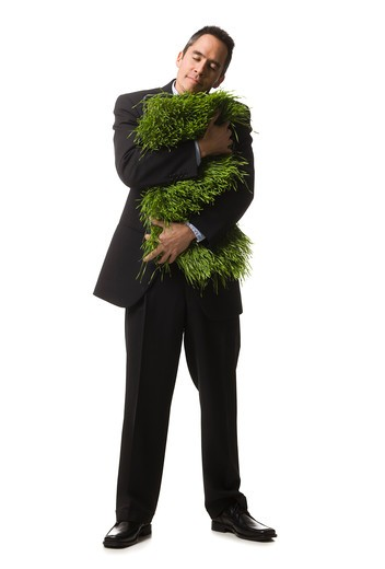 Stock Photo: 1660R-58423 businessperson holding a patch of grass