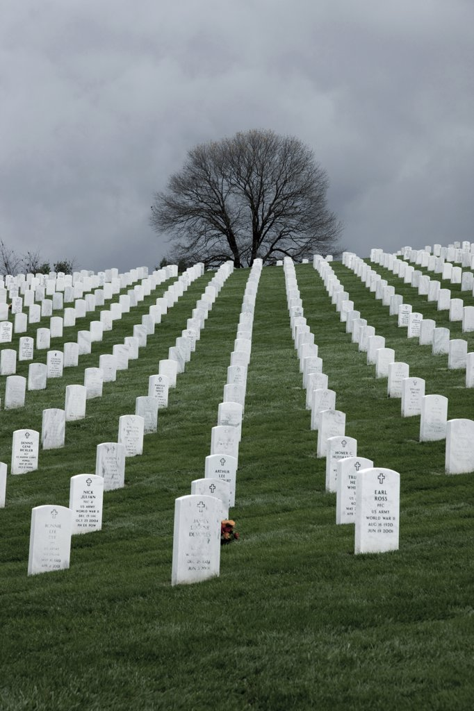 Stock Photo: 1660R-60550 USA, Virginia, Arlington, Arlington National Cemetery