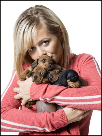 Portrait of a young woman holding four puppies : Stock Photo