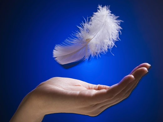 Close-up of a woman's hand catching a feather : Stock Photo