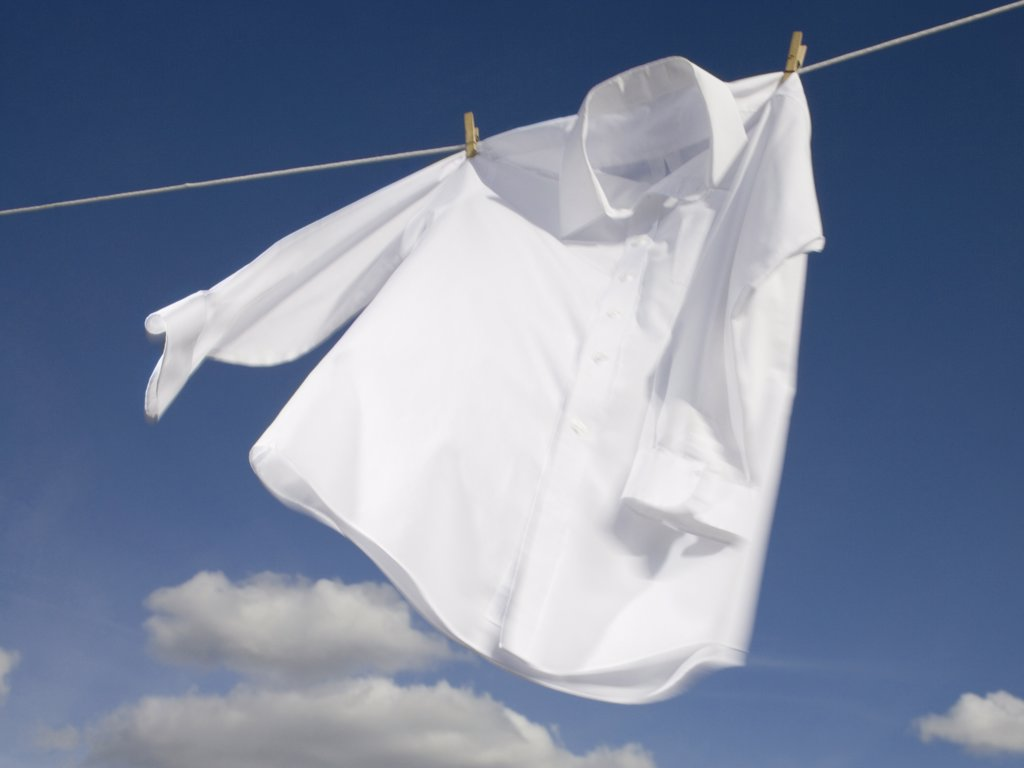 Stock Photo: 1660R-9516 Close-up of a shirt hanging on a clothesline