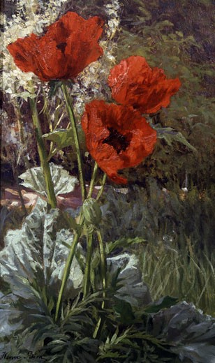 Stock Photo: 1661-330 Poppies Henri Biva (1848-1928 French)