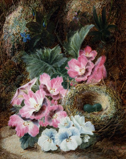 Stock Photo: 1661-349 A Still Life of a Bird's Nest and Violets Oliver Clare (ca.1853-1927 British)