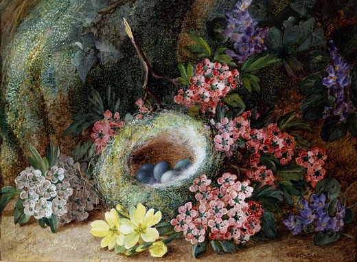 A Bird's Nest with Blossom and Primroses Vincent Clare (ca.1855-1930 British) : Stock Photo