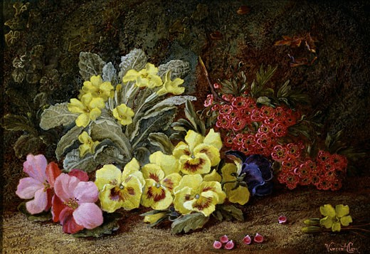 Stock Photo: 1661-357 Pansies and Primroses Vincent Clare (ca.1855-1930 British)