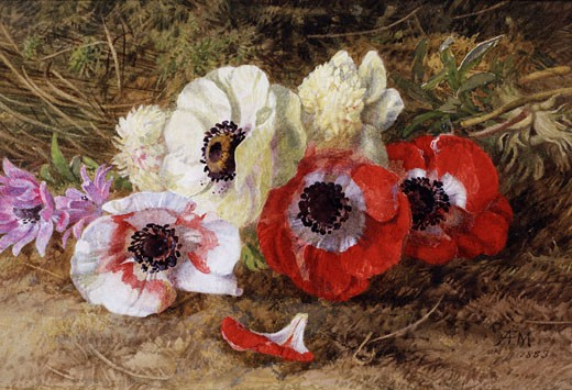 Stock Photo: 1661-386 Anemones 1883 Annie Feray Mutrie (1826-1893 British)