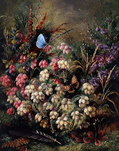 Stock Photo: 1661-388 Butterflies among the Heather 1889 Albert Durer Lucas (1828-1918 British)