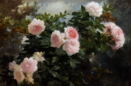 Still Life of Roses Achille Theodore Cesbron (1849-1913 French) : Stock Photo