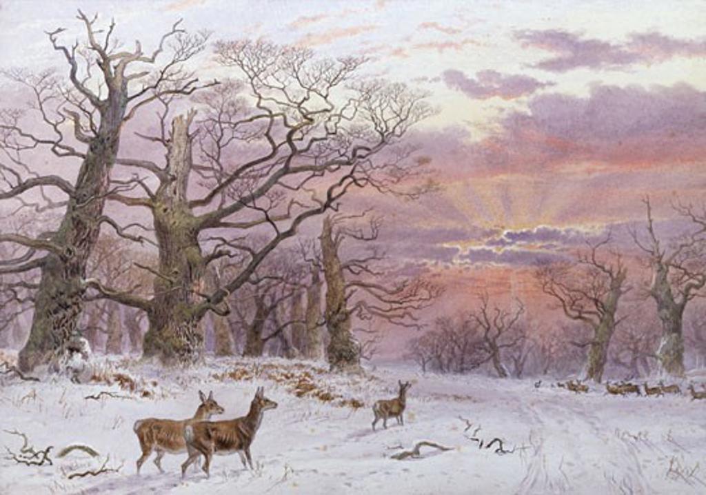 Stock Photo: 1661-742 A Bright Winter Sunset, James Walsham Baldock, (1822-1898/British)